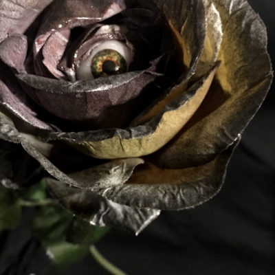 Long Stem Rose- Lilac/Black, I Only Have Eyes For You,
